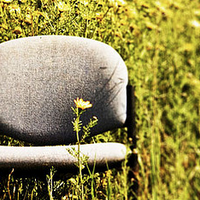 20 Pictures of Lone Chairs