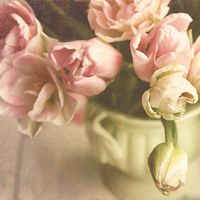 Pretty Flower Bouquets – Shabby Chic Photography by Sylvia Cook