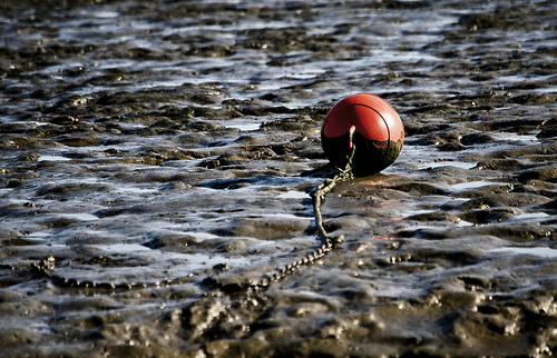 buoy in the mud