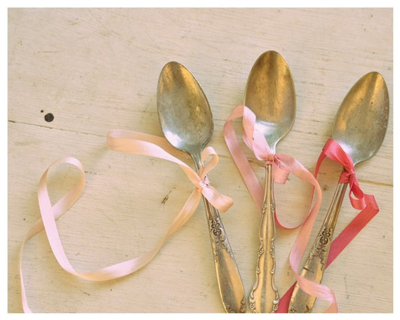 Magnificent Spoons by Havilah Savage