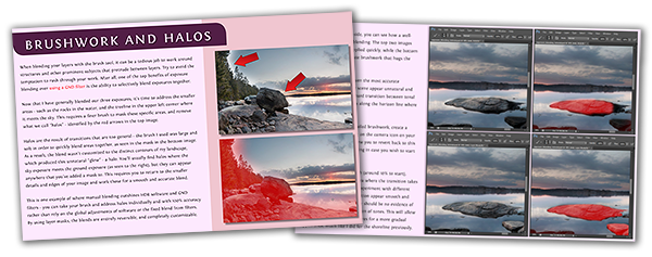 Learn how to remove halos from your photographs with this free eBook guide.