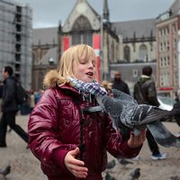 22 Great Pictures of People Feeding Pigeons