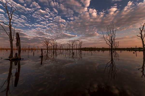 Garett Gabriel Kansas Lake Dawn Reflection Trees