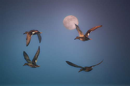 No frontier by photophilde full moon