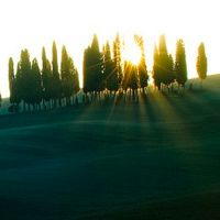 26 Splendid Pictures of Sunbeams