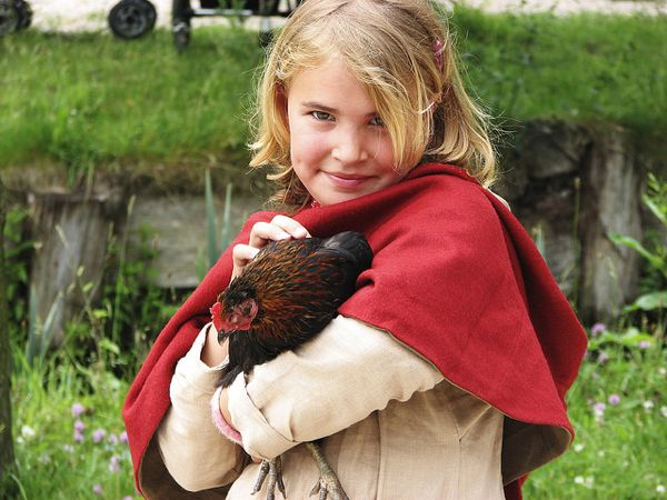 little medieval girl with chicken