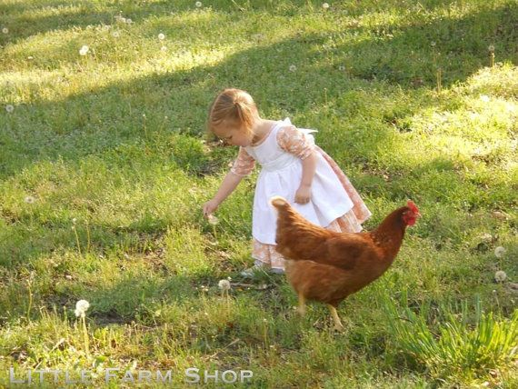 Frontier Country Girl and Chicken in the Dandelion Field