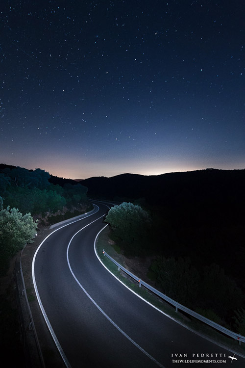 Road disappearing into distance at night