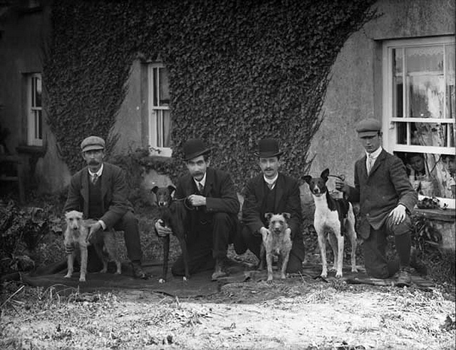 National Library of Ireland Animal Pictures