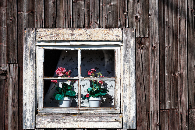 Ulf Bodin Sweden Window