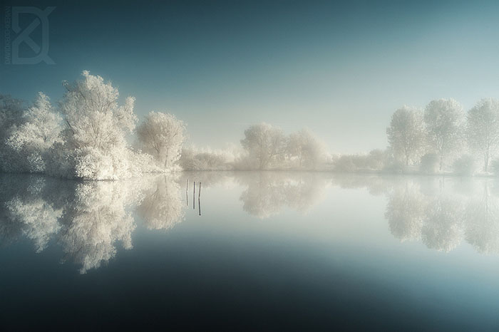 Infrared lake and trees