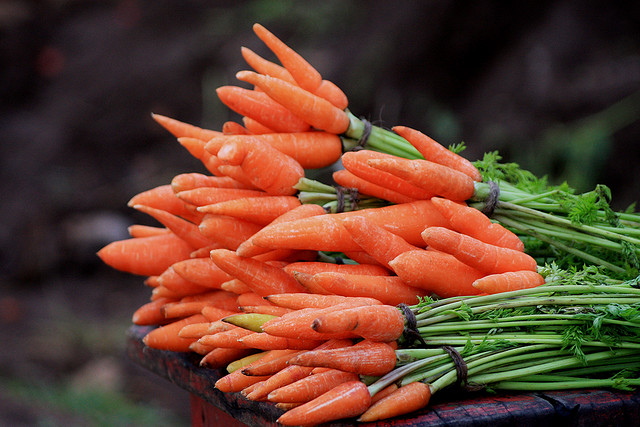 Colorful Carrots by Kabilan Subramanian