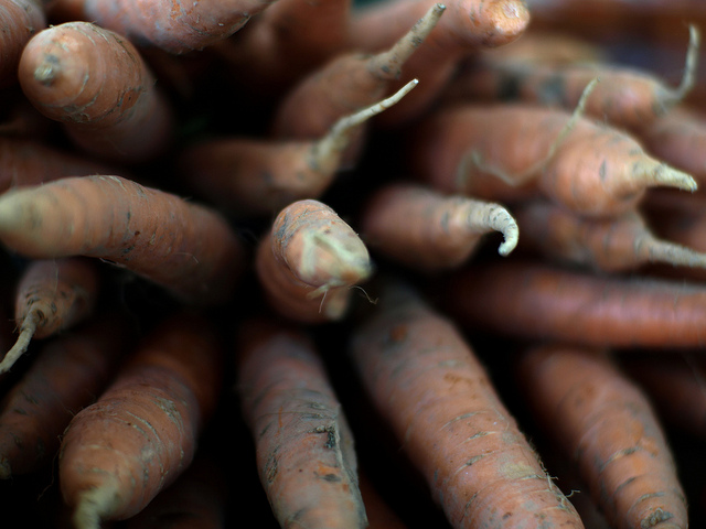 Carrots by Ted Major