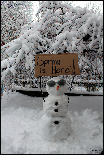 Spring is Here,,,,Michigan Snow Storm snowman snowmen