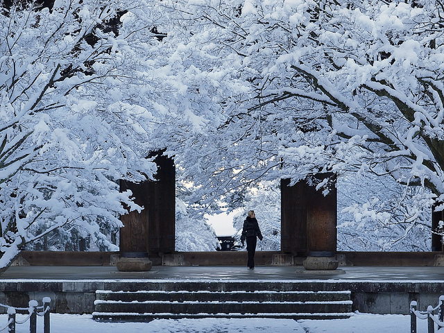 spring to winter scenes from kyoto by yoshi shimamura. Black Bedroom Furniture Sets. Home Design Ideas