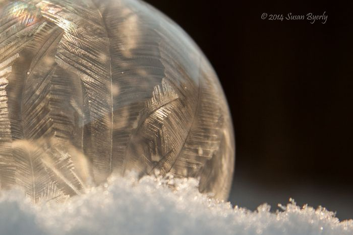 frozen bubble