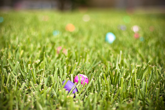 18 Festive Pictures of Easter Egg Hunts