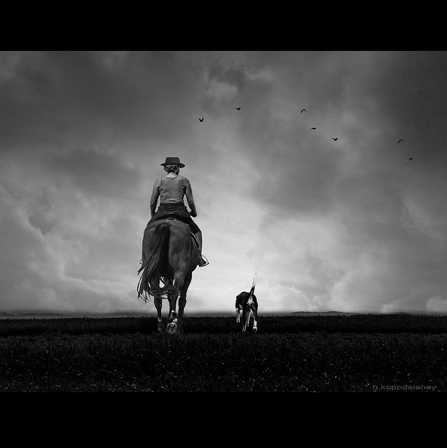 Rider with Dog horse