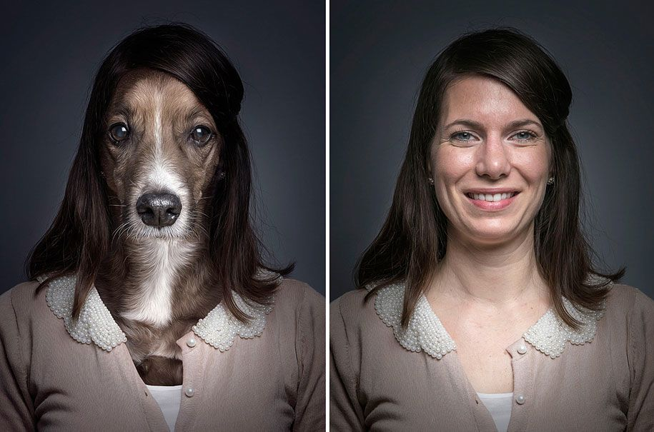 dogs dressed like owners