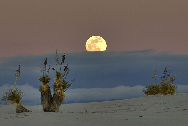 Peekaboo Moon Another shot at White Sands yesterday.